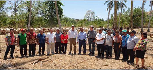 Kegiatan Kerjasama (KS) Fakultas Peternakan Unsrat dengan Central Queensland University (CQU)